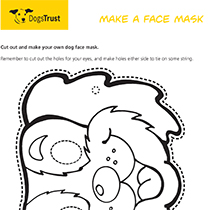 Make A Face Mask
