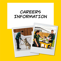 Dogs Trust Careers Information